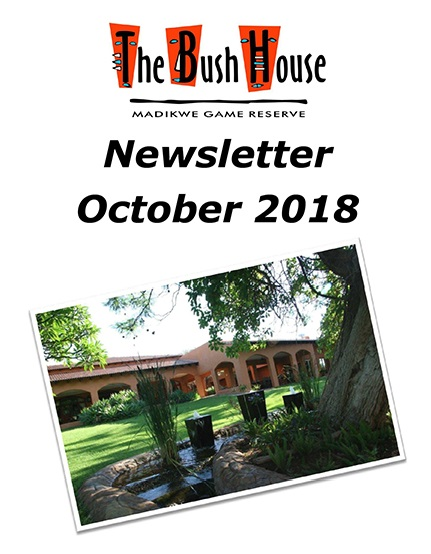 Newsletter October 2018 Cover